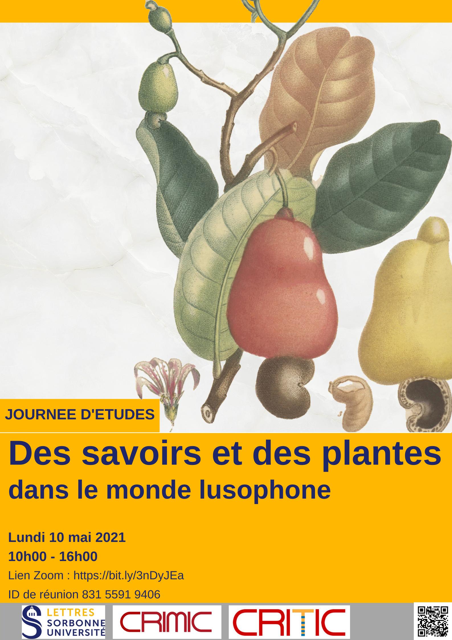 Des savoirs et des plantes dans le monde lusophone
